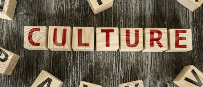 A Review of the Hottest Word: Culture